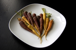 carrot-plate