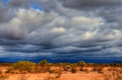 Summer rains are falling later than they used to over the deserts of southwestern United States