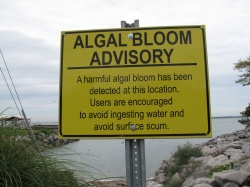 A sign last year warned of poisonous algae in Sandusky Bay, part of Lake Erie.