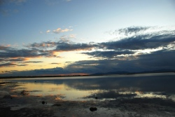 Beaver dams prevented diesel from reaching Willard Bay