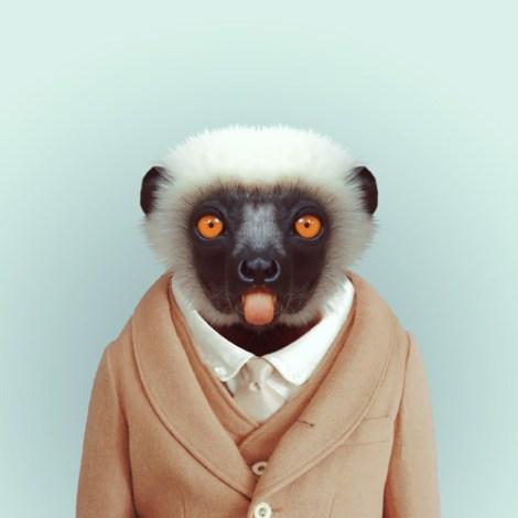 yago_partal_lemur