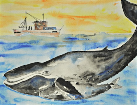 Save the Hump back Whale!