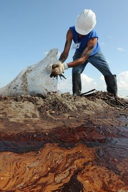 A  contractor cleans up oily waste on Elmer's Island, just west of Grand Isle, La., May 21, 2010.