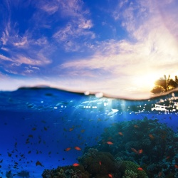 Missing heat has shown up in the oceans, particularly in shallow tropical depths.