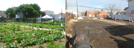 Left: The garden in full bloom in 2009. Right: Cleared out after Hurricane Sandy, January, 2013.
