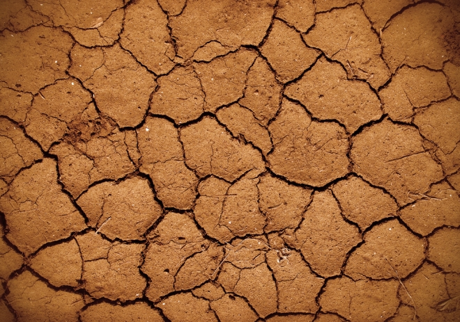 drought dry lands
