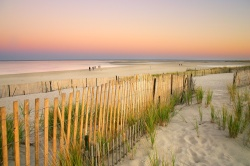 A view of warming waters, from Cape Cod