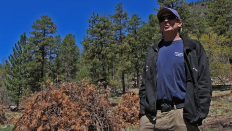 """Veteran firefighter Chris Brehl: """"I get up here sometimes, and I'm scared."""""""