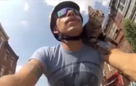 mj_bike_cat