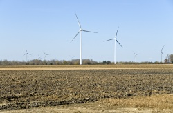 Wind turbines in Ontario, where a Canuck conspiracy to discriminate against Japanese and Europeans was foiled by world trade rules.