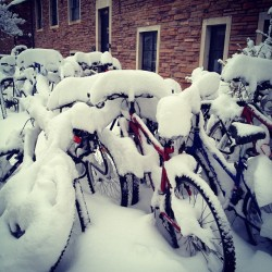 May snow in Boulder, Colo.