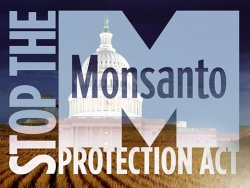 "logo for ""Stop the Monsanto Protection Act"" campaign"
