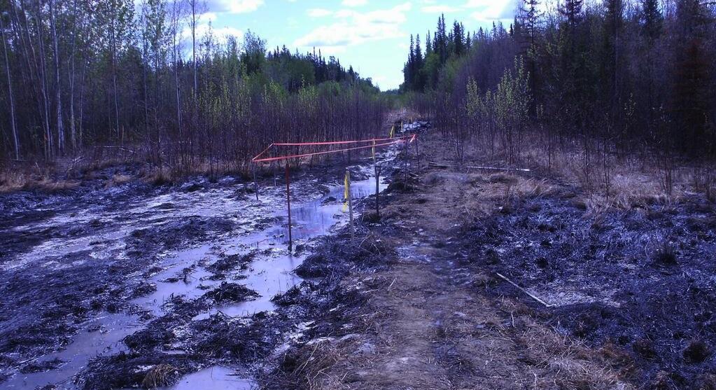 Alberta oil spill