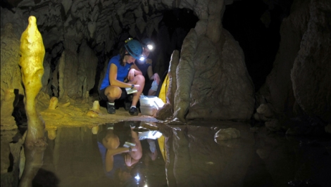 Stacy Carolin collects samples in a Borneo cave last fall.