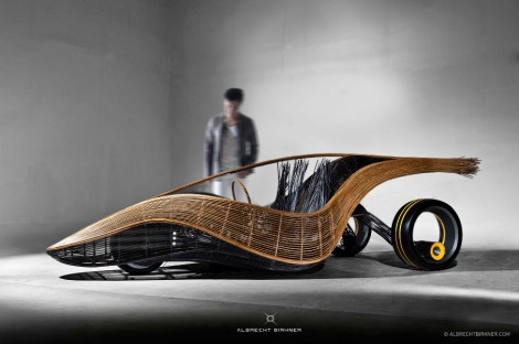 hoenix_bamboo_car