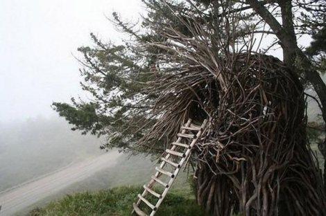 Jayson-Fann-Spirit-Nests-3