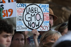 """Label GMOs Now"" sign"