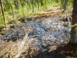 Oil spill at Cold Lake, Alberta