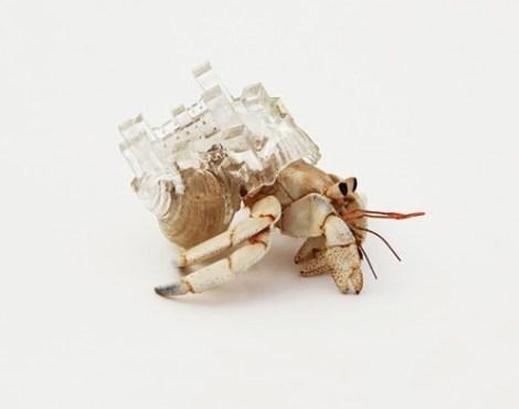 inomata_shell_castle