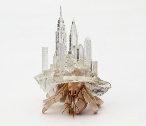 inomata_shell_new_york