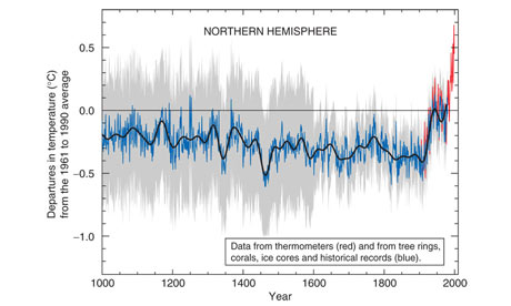 Temperature in the northern hemisphere since 1000 CE. Natural variation in the climate cycle does not contradict climate scientists' predictions.