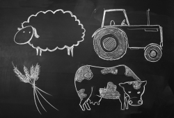 chalkboard of farming life