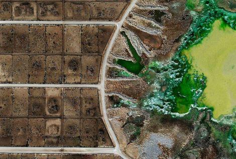 Tacosa Feedyard's waste lagoon, Texas