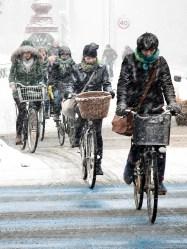 What's not to like about biking in Copenhagen?