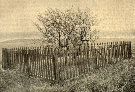 endicott.1920