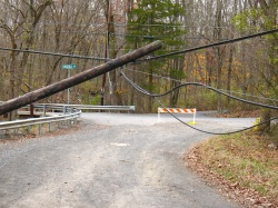 Power pole felled by Superstorm Sandy