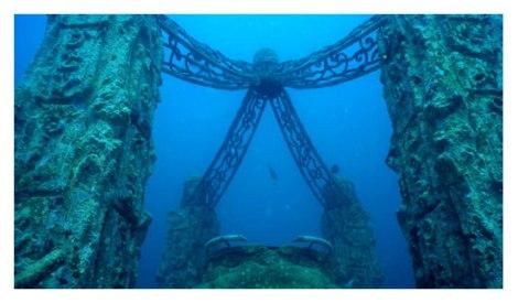 reef gallery