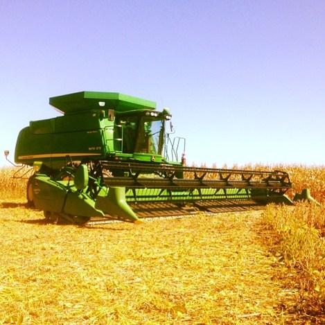 Harvest on Scott's farm