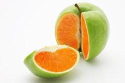 apple orange gmo