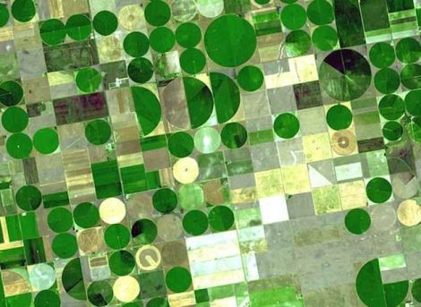 How to make an arid region bloom: irrigated farm plots (between 0.5 and 1 mile in diameter) over the High Plains Aquifer in western Kansas.