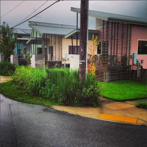 Rainwater garden, Lower Ninth Ward, New Orleans