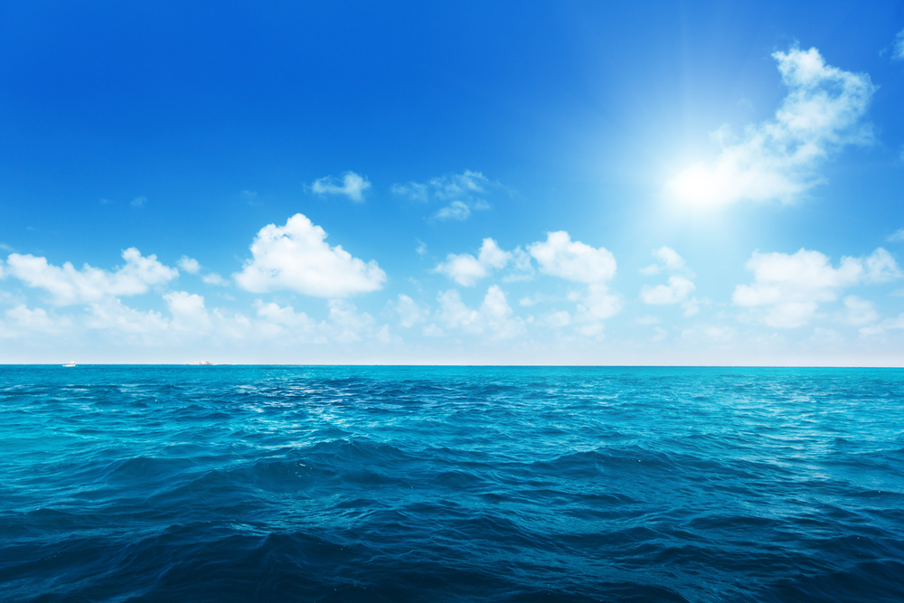 sunny day ocean