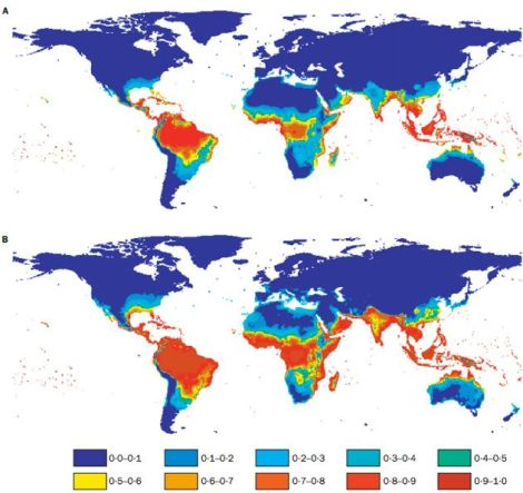 Estimated population at risk for dengue fever in 1990 (A) and 2085 (B) based on climate data from 1961 to 1990. Click to embiggen.