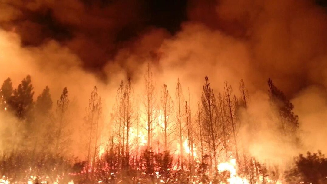 The Rim Fire in California