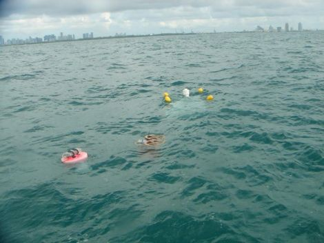 A comparative drift experiment in Biscayne Bay.