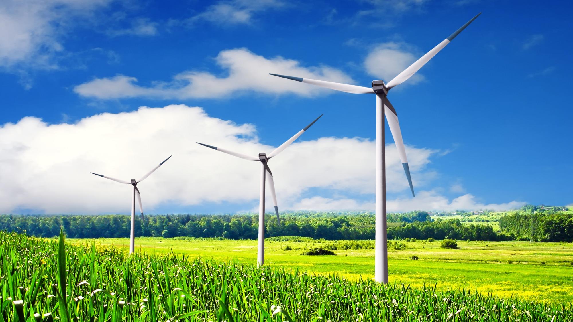 A true wind farm.
