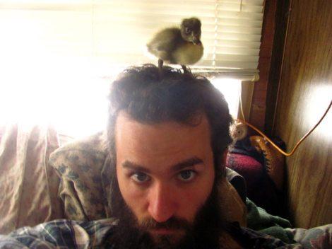 duck_beard_2