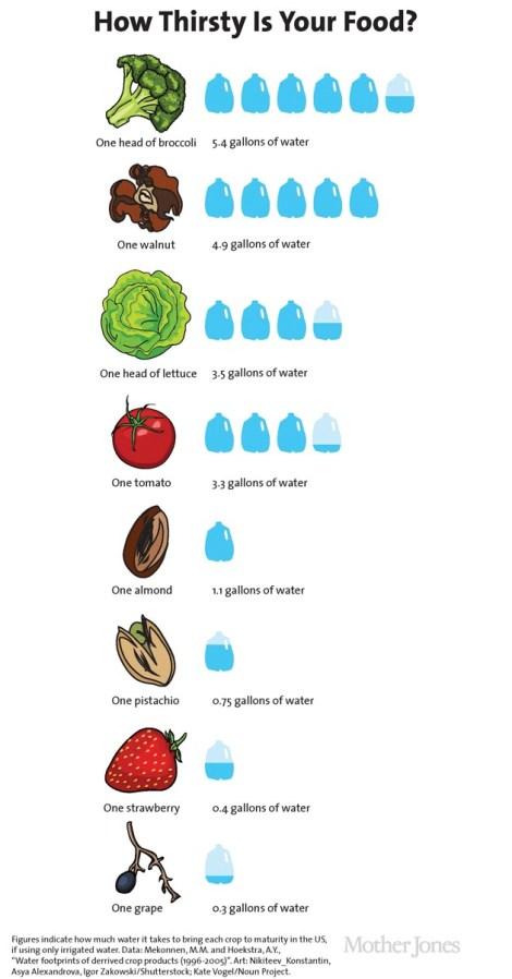 Final-gallons-per-food_2.jpg