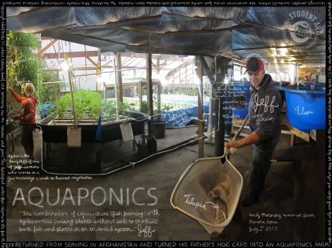 2-aquaponics_project-localize