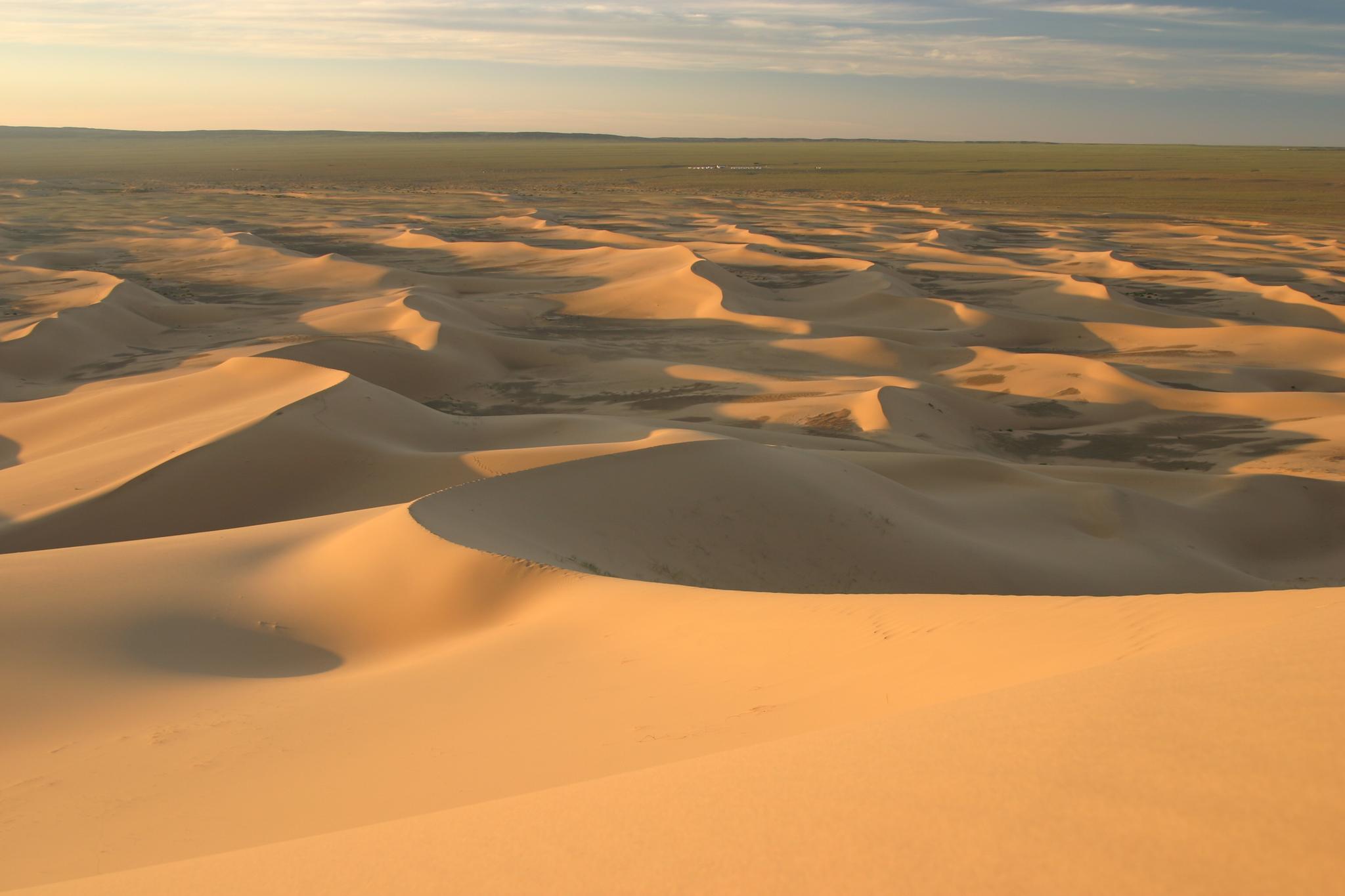 Khongoryn Els-Gobi Desert in Mongolia. Both a literal, and food desert