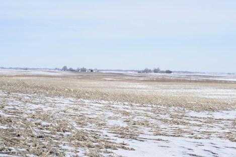 """one of Ausberger's """"never-till"""" fields"""