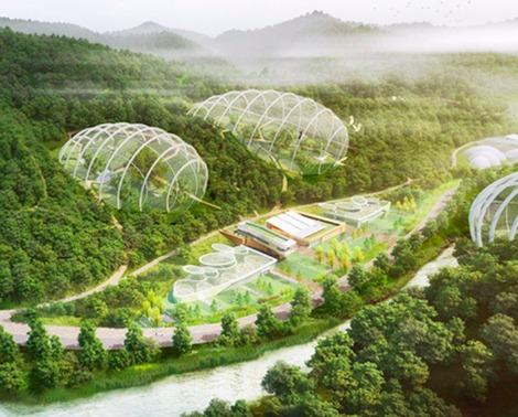 south-korea-endangered-species-bubble