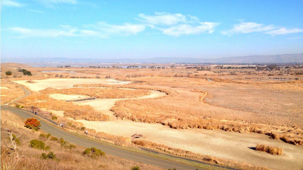 California in drought