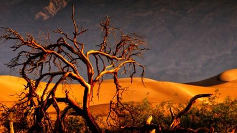 death-valley-hot-california