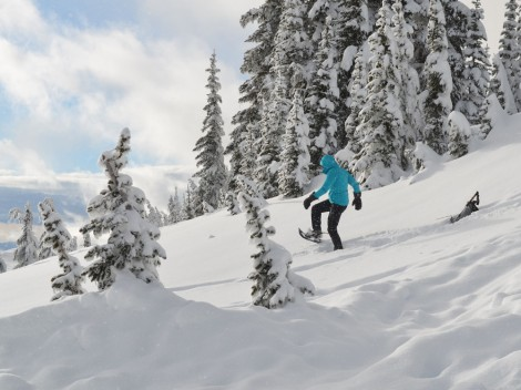 Interior Secretary Sally Jewell has faced an uphill battle in Washington as she tries to implement her ambitious agenda. In February, she went snowshoeing on Mount Rainier to see firsthand the effects of climate change.