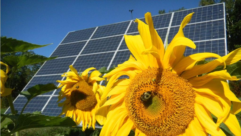 Solar panels in Vermont